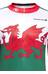 Endura CoolMax Wales Trikot bedruckt Herren Schwarz